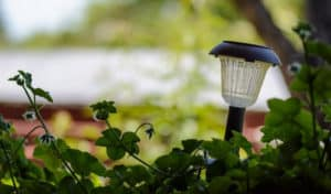 how to clean yellowed plastic solar lights