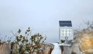 Can Solar Lights Stay Out in Winter