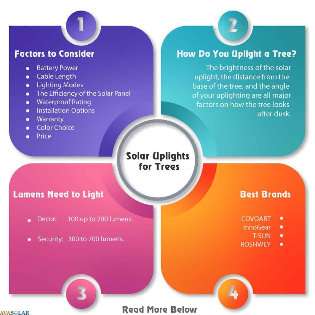 solar-spotlight-for-trees