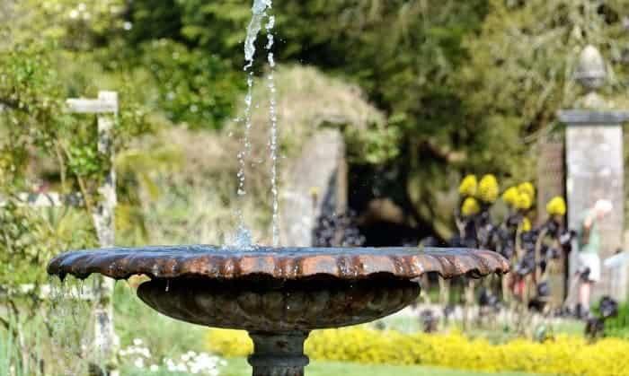 best-solar-water-pump